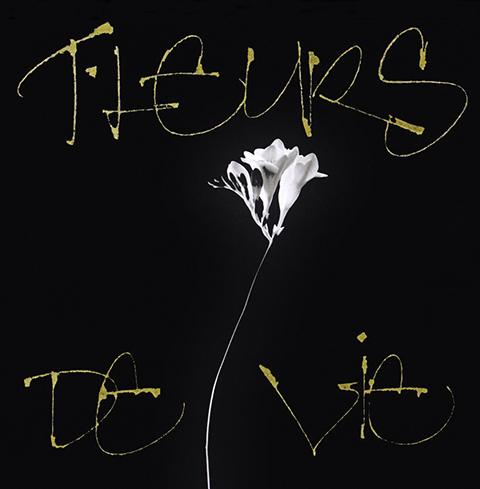 Livre de photographies«Fleur de vie»Photographies : Jacques PolonyCalligraphies : Kitty Sabatier